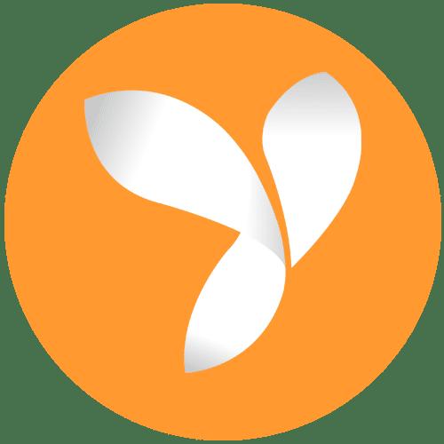 yii development